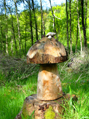 Giant carved wishing mushroom along one of the paths